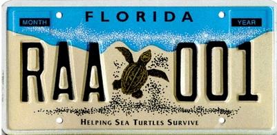 Turtle-Plate